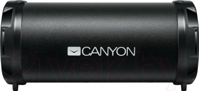 Портативная колонка Canyon CNE-CBTSP5