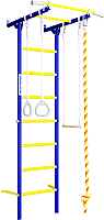 Детский спортивный комплекс Romana S1 01.21.7.06.490.05.00-13 (синяя слива) -
