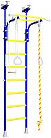 Детский спортивный комплекс Romana R5 01.20.7.06.490.03.00-24 (синяя слива) -