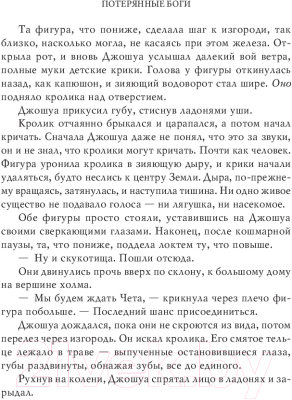Книга АСТ Потерянные боги (Бром Д.)