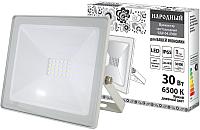 Прожектор TDM SQ0336-0272 -