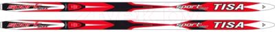 Лыжи беговые Tisa Sport Wax / N90912 (р.210)