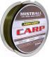 Леска монофильная Mistrall Admunson Carp 0.22мм 250м / ZM-3332022 -
