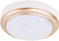 Потолочный светильник TDM SQ0354-0015 -