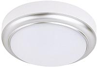 Потолочный светильник TDM SQ0354-0014 -