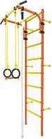 Детский спортивный комплекс Rokids Атлет-1 (оранжевый) -