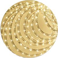 Светодиодный шнур (дюралайт) ETP LRR-3W (100м, теплый белый) -