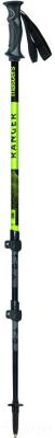 Трекинговые палки Masters Ranger Green / 01S4719