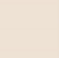 Плитка Netto Gres FB Slim Ivori (600x600) -