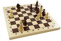 Шахматы Десятое королевство Гроссмейстерские / 02846 -