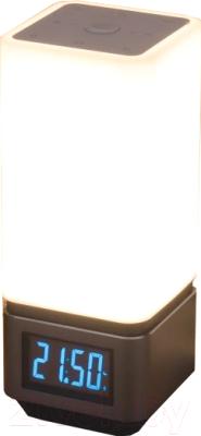 Настольная лампа Elektrostandard 80418/1 (серебристый)
