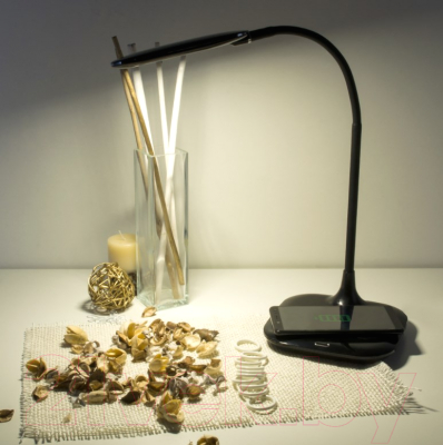 Настольная лампа Elektrostandard 80419/1 (черный)