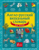 Учебное пособие АСТ Англо-русский визуальный словарь для детей -