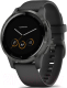Умные часы Garmin Vivoactive 4s / 010-02172-13 (черный/серый) -