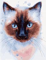 Картина по номерам Picasso Сиамская кошка (PC4050537) -