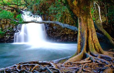 Фотообои листовые Vimala Водопад в Мауи