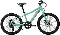 Велосипед Marin Hidden Canyon 20 12 Gloss Teal / A 3445 -
