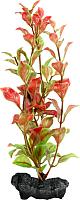 Декорация для аквариума Tetra DecoArt Plant Red Ludwigia (L) -