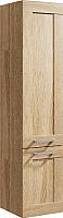 Шкаф-пенал для ванной Aqwella Foster / FOS0535DS -