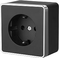 Розетка Werkel Gallant WL15-02-02 / a041693 (черный/хром) -