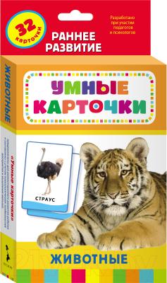 Развивающие карточки Росмэн Животные
