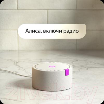 Умная колонка Яндекс Станция Мини YNDX-0004B (черный)