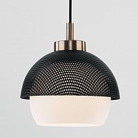 Потолочный светильник Евросвет 50106/1 (античная бронза/черный) -