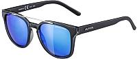 Очки солнцезащитные Alpina Sports Sylon CMB / A86093-35 (черный матовый/черный) -