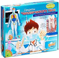 Набор для опытов Bondibon Секреты человеческого тела. 8 экспериментов / ВВ0927 -