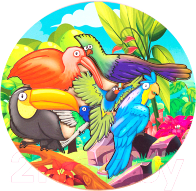Развивающая игра Paremo Вкладыши. Птицы / PE720-06
