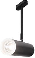 Трековый светильник Elektrostandard Oliver LTB45 9W 4200K (черный) -