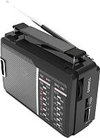 Радиоприемник Ritmix RPR-190 -
