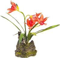 Декорация для террариума Lucky Reptile Orchid red / IF-13 (красный) -
