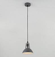 Потолочный светильник Евросвет Norman 50174/1 (серый) -
