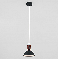 Потолочный светильник Евросвет Norman 50174/1 (черный) -