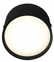 Потолочный светильник Kinklight Медина 05410.19 (черный) -