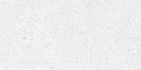 Плитка Netto Cemento Perht Light Grey (300x600) -