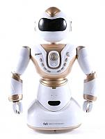 Игрушка на пульте управления MZ Робот / 2850 -