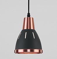 Потолочный светильник Евросвет Nort 50173/1 (черный) -