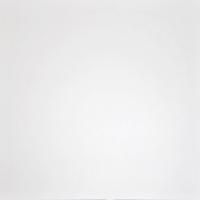 Плитка Grasaro Domino G-100/LR (600x600, супер-белый) -