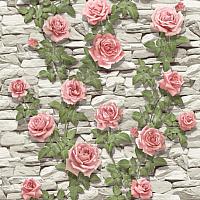 Обои Vimala Садовая роза 4680 -