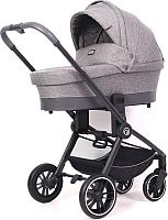 Детская универсальная коляска Rant Flex Trends 3 в 1 / RA063 (серый) -