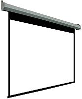 Проекционный экран PL Magna 259x163см MW / MRSM-PC-120D -