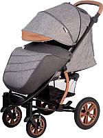 Детская прогулочная коляска Babyhit Tribute / BS102 (Dual Grey) -