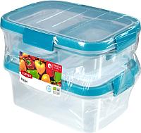 Набор контейнеров Curver Smart Fresh 00994-284-00 / 232592 (прозрачный/голубой) -