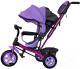 Детский велосипед с ручкой GalaXy Виват 1 (фиолетовый) -
