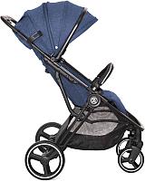 Детская прогулочная коляска Babyzz B100 (синий) -