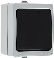 Выключатель КС Дабрабыт ОП 10А IP54 / 74841 (серый) -