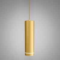 Потолочный светильник Elektrostandard DLR023 12W 4200K (матовое золото) -