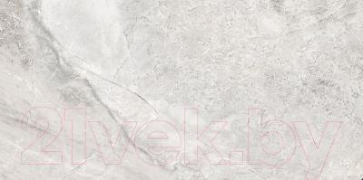 Плитка Absolut Keramika Papiro Grey (298x600)